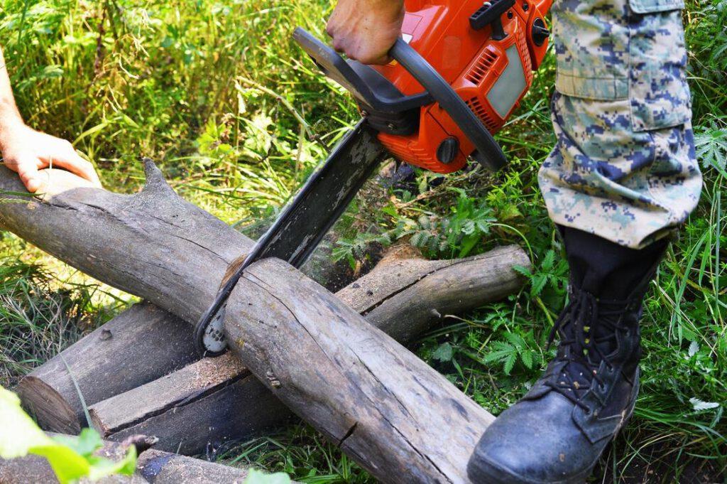 southlake-tree-service-company-tree-removal-disposal-2_orig